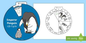 Emperor Penguin Life Cycle Wheel Split Pin Activity - Emperor Penguin Life Cycle Wheel Split Pin Activity