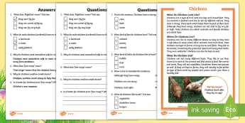 KS1 Chickens Differentiated Reading Comprehension Activity - Children's Books, story, book, Easter, save, saving, Easter Bunny, bunny, bunnies, stories, chick,