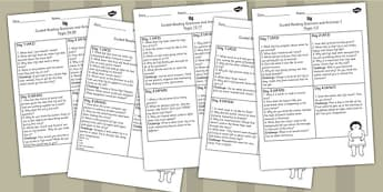 Guided Reading Pack to Support Teaching on Ug - ug, pack, reading, guided reading