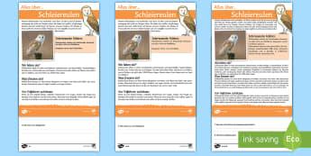 Schleiereulen Leseverstehen Arbeitsblätter: Unterschiedliche Schwierigkeitsgrade - eulen, heimische Tiere, nachtaktiv, Nachttiere,