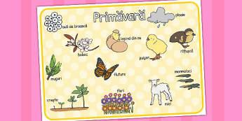 Primăvara - Planșă cu imagini și cuvinte - primăvara, decor, planșe, întrebări, imagini, cuvinte, planșe, cuvinte, anotimpuri, anotimp, materiale didactice, română, romana, material, material