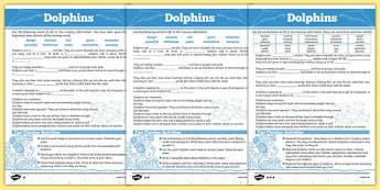 Australian Animals Years 3-6 Dolphins Differentiated Cloze Passage Activity Sheet - australia, animals, 2-6, dolphins, differentiated, cloze passage, activity, worksheet