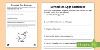 Scrambled Egg Sentence Unscramble - Jumbled up sentences, Northern Ireland, Balmoral Show, 10th-13th May, Farming, Agriculture, Key Stage 1, chickens, eggs, s
