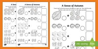 A Sense of Autumn addition Activity Sheet - seasons, Aistear, school trip, forest, blackberries, squirrels, worksheet, leaves, bark, numeracy, c