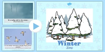 Winter Information PowerPoint Polish Translation - polish, winter, powerpoint, information