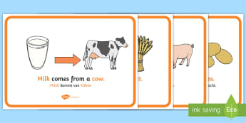 Where Does Food Come From Display Posters English/German - eating, nutrition, posters, display, farming, EAL, German