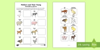 Mothers and Their Young Farm Animals Matching Activity English/Romanian - farm, on the farm, mothers and their young, mothers and their young matching activity, matching, ani