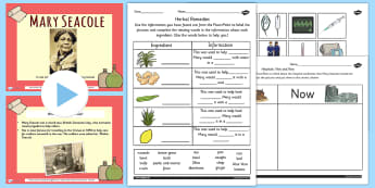 Mary Seacole Significant Individual Lesson Teaching Pack - plans