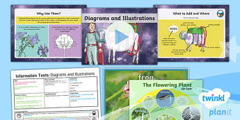 Space: The King of Space: Information Texts 7 Y3 Lesson Pack To Support Teaching on 'The King of Space' - Earth and space, astronauts, rex, adventure story, the pirates