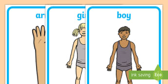 Parts of the Body Display Posters - body, health, all about me, posters, special education
