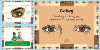 Pŵerbwynt Y Synhwyrau - Golwg - Golwg, y synhwyrau, gwyddoniaeth, Cymraeg, Welsh