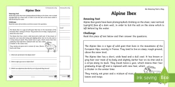 Alpine Ibex Comprehension Activity Sheet - Amazing Fact Of The Day, activity sheets, powerpoint, starter, morning activity, February, comprehen