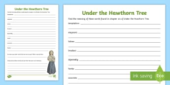 Chapter Six Dictionary Work Activity Sheet to Support Teaching on Under the Hawthorn Tree-Irish - worksheet, dictionary work,  quiz, stories, novel, comprehension, fourth class, fifth class, sixth c