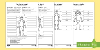 * NEW * I've Got a Body! Activity Sheet - English / Spanish  - Amazing Fact Of The Day, activity sheets, powerpoint, starter, morning activity, november, body, my