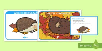 Aricii hibernează Activitate - Animale de pădure, iarna, hibernare, ariciul, hibernearea, activități, relaxare, jocuri,Romanian