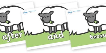 Connectives on Sheep to Support Teaching on Pig in the Pond - Connectives, VCOP, connective resources, connectives display words, connective displays