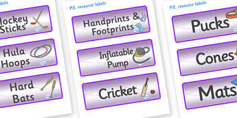 Chameleon Star Constellation Themed Editable PE Resource Labels - Themed PE label, PE equipment, PE, physical education, PE cupboard, PE, physical development, quoits, cones, bats, balls, Resource Label, Editable Labels, KS1 Labels, Foundation Labels