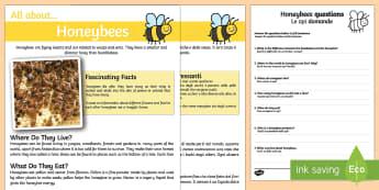 Honeybee Reading Comprehension English/Italian - Honeybee Reading Comprehension - honeybee, reading, comprehension, comprehesion, comprehnsion, readi
