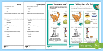 How to Look After a Cat Differentiated Reading Comprehension Activity English/Afrikaans - Pets, troeteldiere, tame, healthy, care, food, vet, EAL