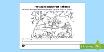 Protecting Rainforest Habitats Activity Sheet - ACSHE022, caring for the environment, daintree, science human endeavour, Sustainable,Australia, work