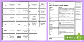 OCR Gateway Organism Level Systems Word Loops - hormones, CNS, testosterone, sensory neurone, cornea, pupil