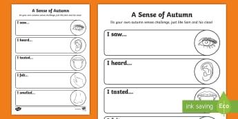 A Sense of Autumn Senses Challenge Activity Sheet - A, Sense, of, Autumn, seasons, Aistear, school trip, forest, blackberries, worksheet, squirrels, lea