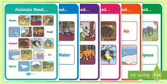 Animals Needs Display Posters - ACSSU002, growing well, staying alive, prep, reception, fauna, survival