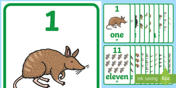 Australian Animals Numbers 1-20 A2 Display Poster - australia, australian animals, animals. counting, numeracy, maths,Australia