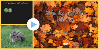 Was sehe ich im Herbst? PowerPoint Spiel