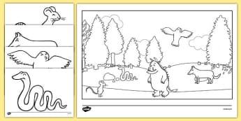 The Gruffalo Colouring Sheets - The Gruffalo, resources, mouse, fox, owl, snake, Gruffalo, fantasy, rhyme, story, story book, story book resources, story sequencing, story resources, Colouring Sheets, colouring, colouring activity,