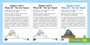 Northern Ireland Linguistic Phonics Stage 5 and 6 Phase 3b, 'aw' Sound Worksheet / Activity Sheet
