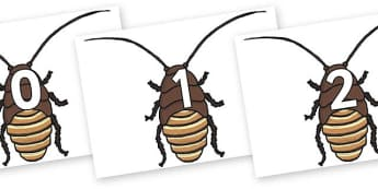 Numbers 0-50 on Cockroach - 0-50, foundation stage numeracy, Number recognition, Number flashcards, counting, number frieze, Display numbers, number posters