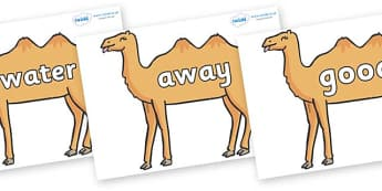 Next 200 Common Words on Camels - Next 200 Common Words on  - DfES Letters and Sounds, Letters and Sounds, Letters and sounds words, Common words, 200 common words