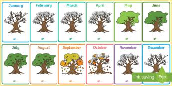 Months of the Year on Oak Trees Display Posters - Months of the Year on Oak Trees - month, months, year, seasons, tree, british wildlife