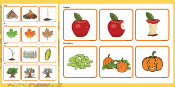 Autumn Sequencing Challenge Cards