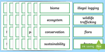 Year 6 AC Geography Asian Region Word Cards - ACHASSK138, diversity, environment, North-East Asia, South-East Asia, South Asia, geographical,Austr