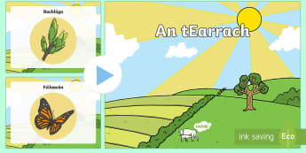 Spring PowerPoint Gaeilge - An tEarrach, flowers, Spring, SESE, Aistear, science, geography, seasons, changes, flowers