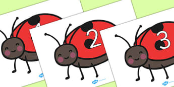 Numbers 0-50 on Ladybird - 0-50, foundation stage numeracy, Number recognition, Number flashcards, counting, number frieze, Display numbers, number posters