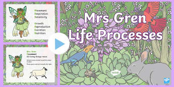 Mrs Gren Life Processes PowerPoint - living things, life processes, Identify that animals, including humans, need the right types and amo