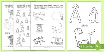 Limba Română Alfabet și Grupuri De Litere Materiale Page 10