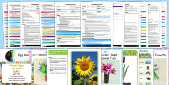 EYFS Plants and Growth Themed Adult Input Planning Pack - planning, plan