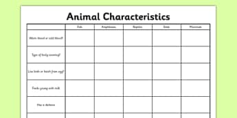 Animal Characteristics Activity Sheet - living things, habitats, variation, classification, grouping, vertebrates, characteristics, worksheet