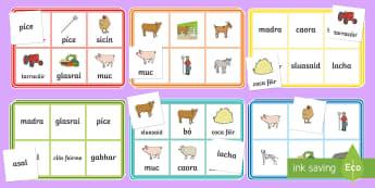 Ar an bhFeirm Bingo Gaeilge