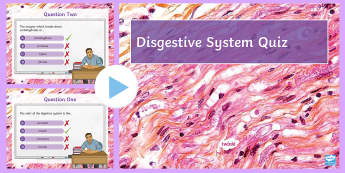 Digestion Quiz PowerPoint - PowerPoint Quiz, Digestion, Digestive System, Mouth, Stomach, Intestines, Bowels