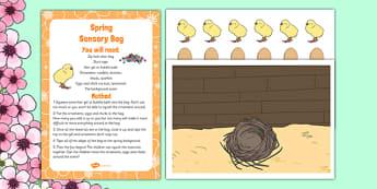 Spring Sensory Bag - Spring, baby animals, reveal wheel, sensory bag