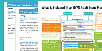 EYFS Sometimes Matches Numeral and Quantity Correctly Adult Input Planning and Resource Pack Overview - Early Years planning, eYFS, topic plan, Foundation, counting, numerals, matching