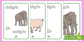 Plakaty Słowa opisujące wielkość - mały, mała, duży, duża, ciężki, lekki, wielkość, ciężar, masa, matematyka, długi, krótki