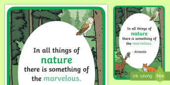Woodland Creature Inspirational Quote by Aristotle Display Poster - Woodland, animal, wood, creature, classroom, display, banner, trees