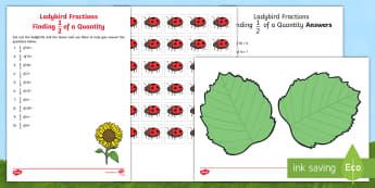 Ladybird Fractions Finding Half of a Quantity Activity - finding half, halves,fractions of a number, fractions of a quantity, halving within 20, fraction act
