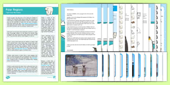 Polar Regions Topic Hook Wow Ideas and Resource Pack - EYFS, Early Years, KS1, Key Stage 1, Topic Starter, Topic Hook, Wow Ideas, Wow Day, Polar Regions, A